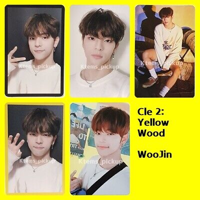 stray kids photocard album yellow wood official photo card woojin
